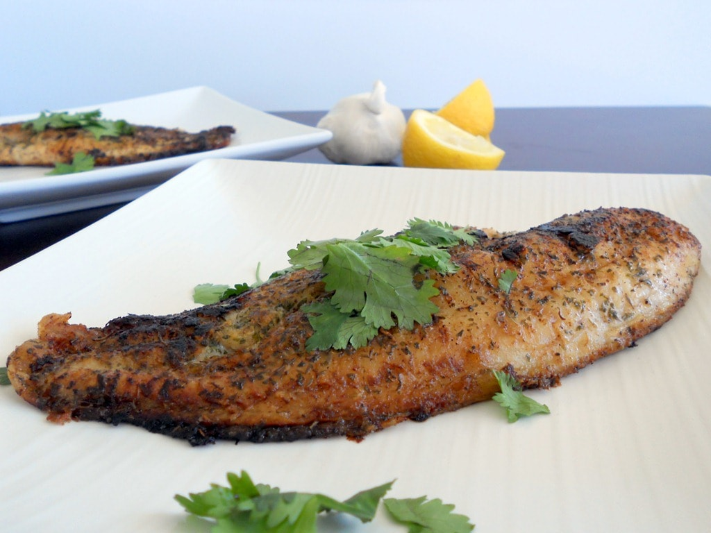 Pan-Seared Lemon Herb Catfish Fillet