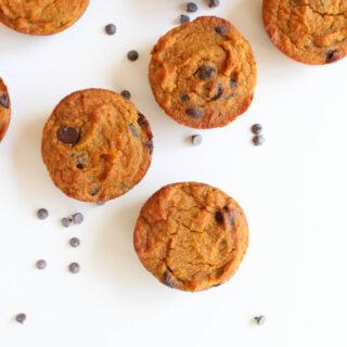 [Paleo] Pumpkin Chocolate Chip Muffins